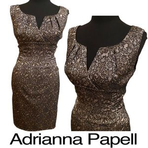 Adrianna Papell Tan Black Lace Over Dress Size 10